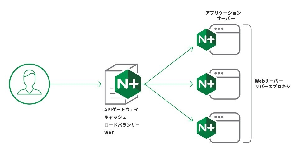 nginx-plus